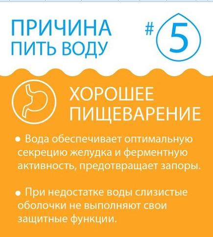Вода способствует хорошему пищеварению