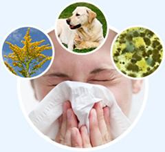 Биорезонансная диагностика и лечение аллергии в многопрофильном диагностическом центр