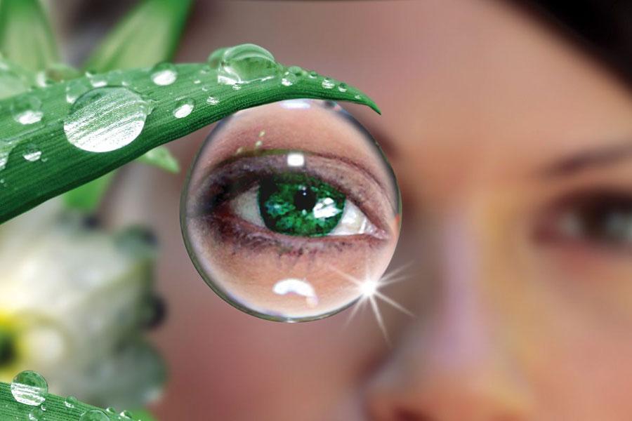 Комплекс лечебных программ  для приборов Биомедис и ДеВита «Зоркий взгляд»
