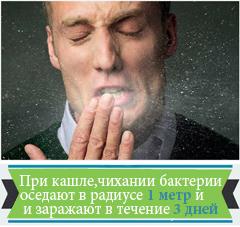 При кашле, чихании бактерии оседают в радиусе 1 м и заражают в течение 3 дней