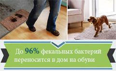 До 96% фекальных бактерий переносятся в дом на обуви