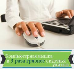 3.Компьютерная мышка в 3 раза грязнее сиденья унитаза