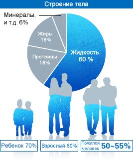 Содержание воды в теле ребенка 70%, взрослого 60%, пожилого человека 50-55%